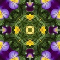 Kaleidoscope #754