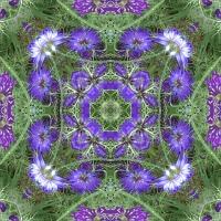 Kaleidoscope #755