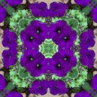 Kaleidoscope #756