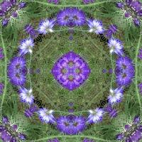 Kaleidoscope #762