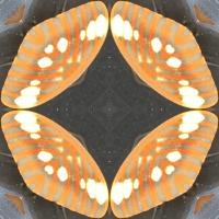 Kaleidoscope #783