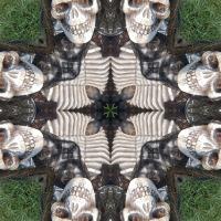 Kaleidoscope #784