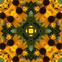 Kaleidoscope #814