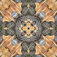 Kaleidoscope #817