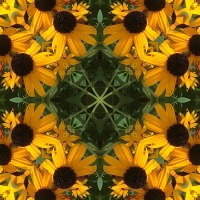 Kaleidoscope #819