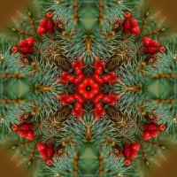 Kaleidoscope #836