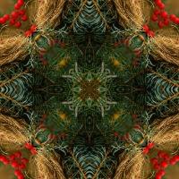 Kaleidoscope #842