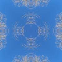 Kaleidoscope #889