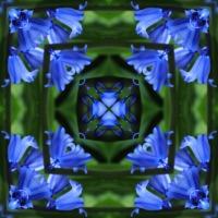 Kaleidoscope #913