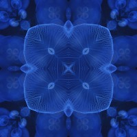 Kaleidoscope #915