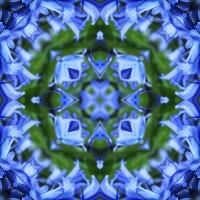 Kaleidoscope #916