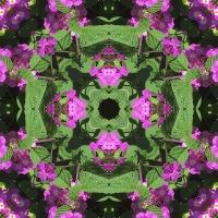 Kaleidoscope #948