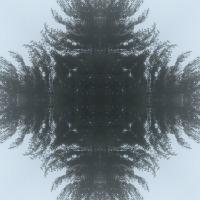 Kaleidoscope #949