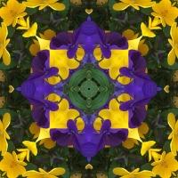 Kaleidoscope #962