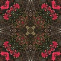 Kaleidoscope #963