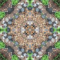 Kaleidoscope #1001