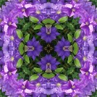 Kaleidoscope #1003