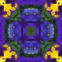 Kaleidoscope #1004