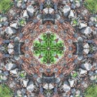 Kaleidoscope #1005