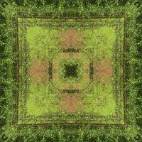 Kaleidoscope #1006