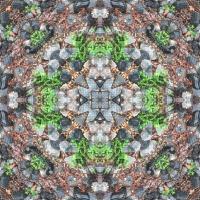 Kaleidoscope #1008