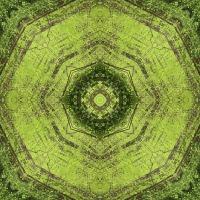 Kaleidoscope #1012
