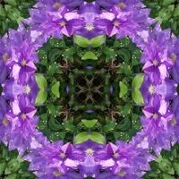 Kaleidoscope #1014