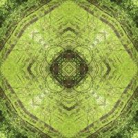 Kaleidoscope #999