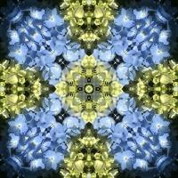 Kaleidoscope #1050