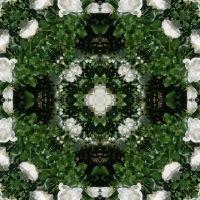 Kaleidoscope #1054