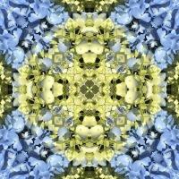 Kaleidoscope #1056