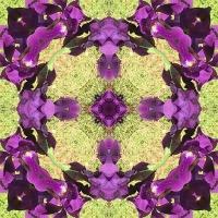 Kaleidoscope #1058