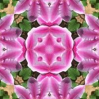 Kaleidoscope #1059