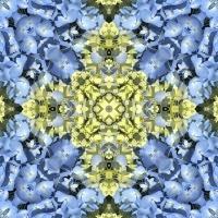 Kaleidoscope #1060