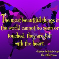 Quote of the Week - The most beautiful things...
