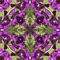 Kaleidoscope #1120