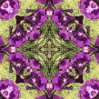 Kaleidoscope #1134