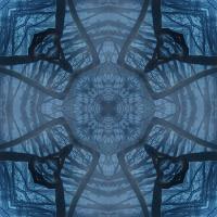 Kaleidoscope #1146
