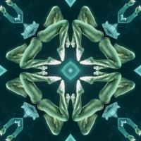 Kaleidoscope #1150